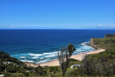 This is the Royal National Park, about an hour South from Sydney