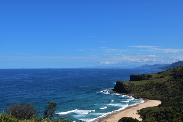 Don't forget that place: Royal National Park!