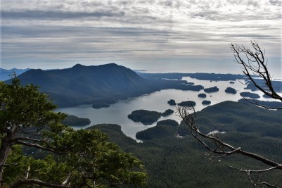 Lone Cone Mountain, Meares Island