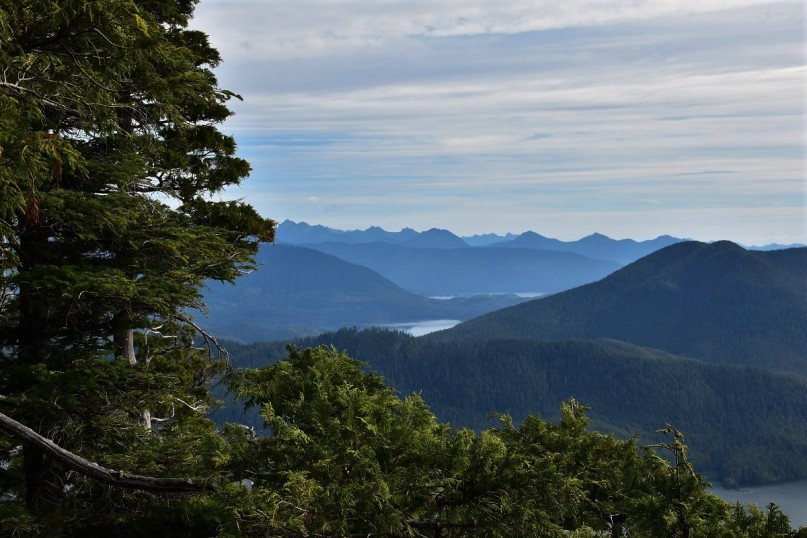 View, Lone Cone Mountain, Meares Island