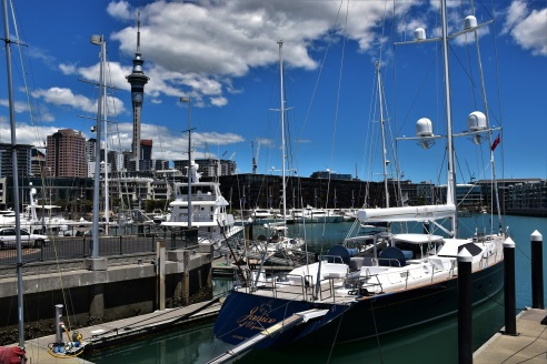 Auckland, harbour