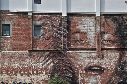 Street art, Christchurch