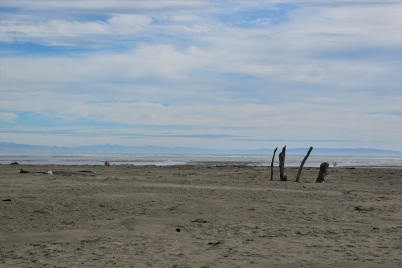 Sumner Beach, Christchurch