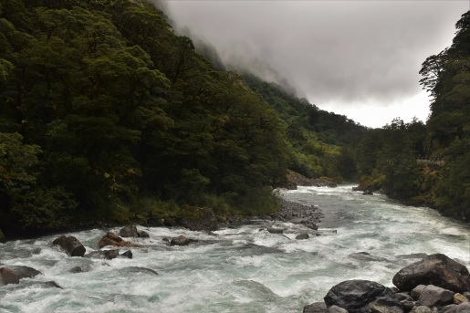 River, Milford Sound