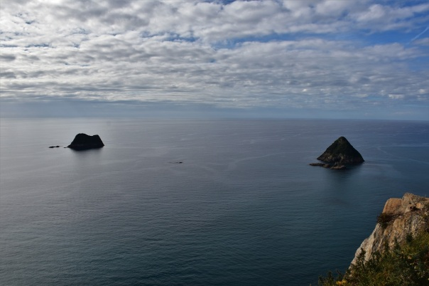 The coast of New Plymouth