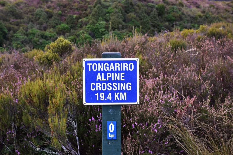 The beginning of Tongariro Alpine Crossing
