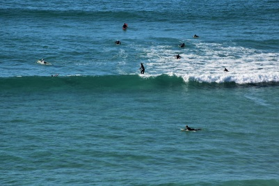 Surfers, Byron Bay
