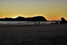 Sunrise, kangaroo, Cape Hillsborough