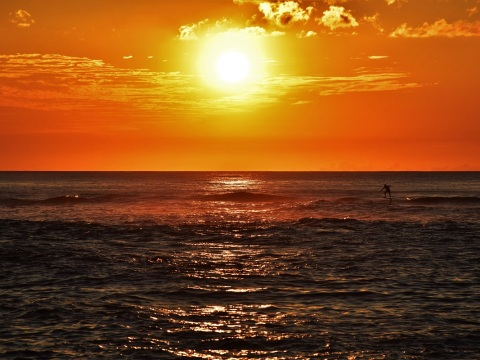Surfer at sunset, Laniakea Beach, Oahu