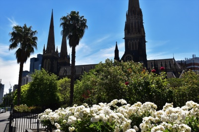St Patricks Cathedral, Melbourne