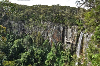 Purling Brook Falls, Springbrook National Park