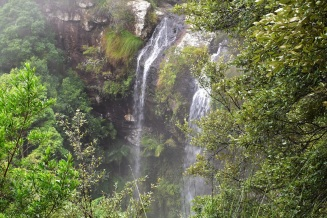Twin Falls, Springbrook National Park