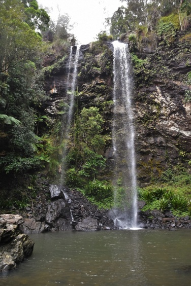 Waterfall, Springbrook National Park