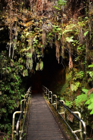Thurston lava tube, Big Island