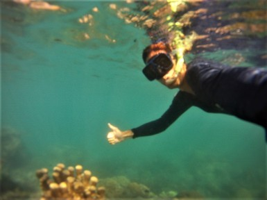 Snorkelling, Whitsunday Islands