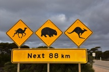 Animals sign, Nullarbor Plain