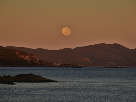 Moon, sunrise, Tasmania