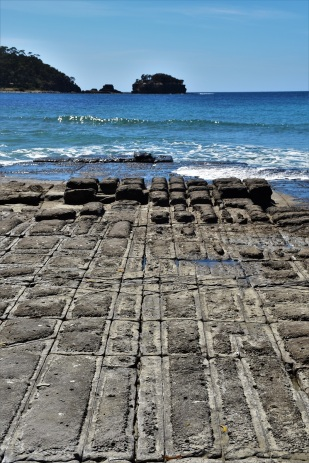 Tesselated Pavement, Tasmana Peninsula, Tasmania