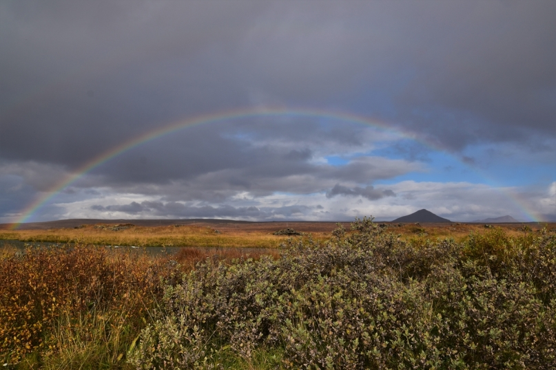 Rainbow, Lake Myvatn