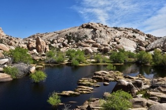 Joshua Tree National Park, Barker Dam