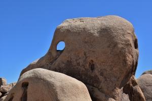 Joshua Tree National Park, Jumbo Rocks
