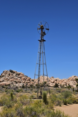 Joshua Tree National Park, windmill