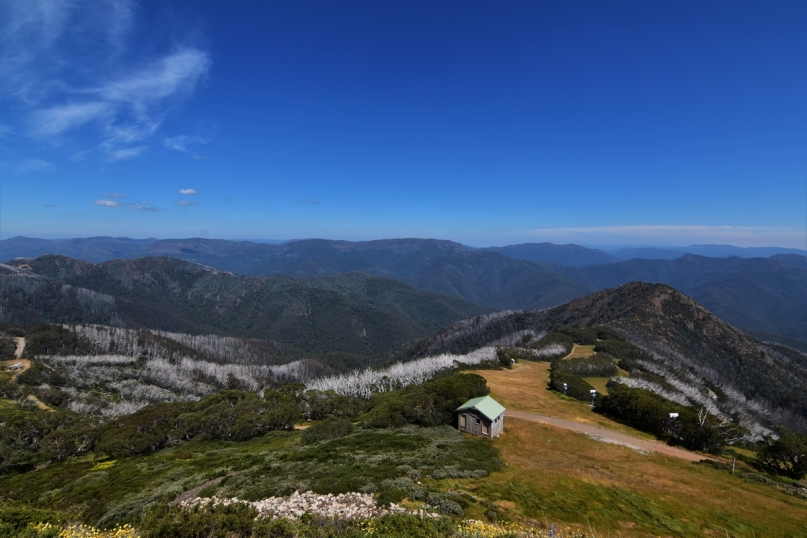 Mount Buller, summit view