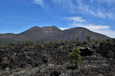 Sunset Crater Volcano National Monument, Bonito Lava Flow