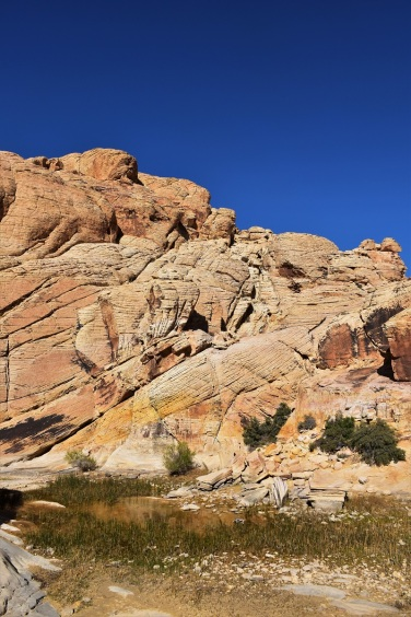 Red Rock Canyon, Calica Tank Trail