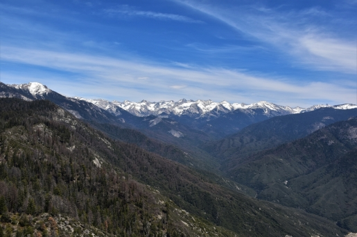 Sequoia National Park, Moro Rock, Sierra Nevada