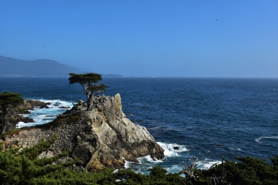 17 Mile Drive, Lone Cypress