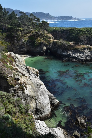 point-lobos-state-park-7