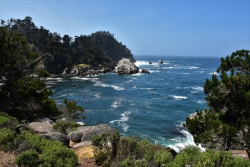 Point Lobos State Park, Bluefish Cove