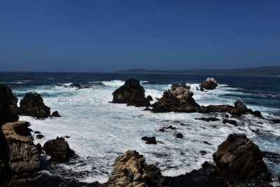 Point Lobos State Park, Cannery Point