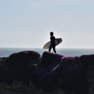 Santa Cruz, surfer