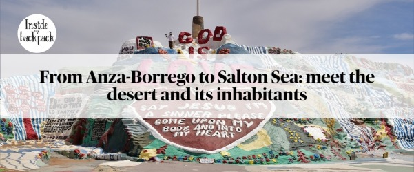 from-anza-borrego-to-salton-sea-meet-the-desert-and-its-inhabitants-article
