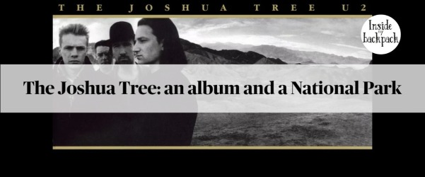 joshua-tree-album-and-national-park-article