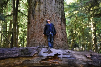 Me and a very large tree on Vancouver Island